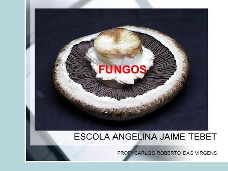 ESCOLA ANGELINA JAIME TEBET PROFº CARLOS ROBERTO DAS VIRGENS