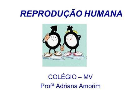 COLÉGIO – MV Profª Adriana Amorim