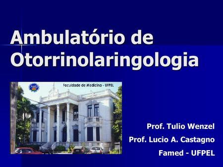 Ambulatório de Otorrinolaringologia Prof. Tulio Wenzel Prof. Lucio A. Castagno Famed - UFPEL.