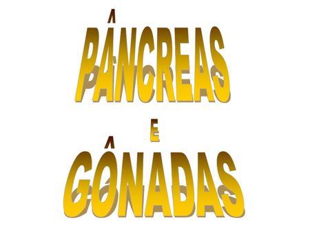PÂNCREAS E GÔNADAS.