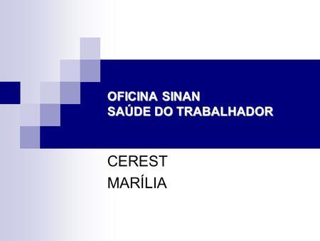 OFICINA SINAN SAÚDE DO TRABALHADOR