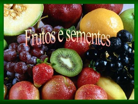 Frutos e sementes.