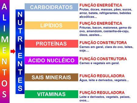 FUNÇÃO REGULADORA Leite e derivados, vegetais, peixes, ovos... FUNÇÃO REGULADORA Água, leite e derivados, vegetais... FUNÇÃO CONSTRUTORA Carnes e vegetais.