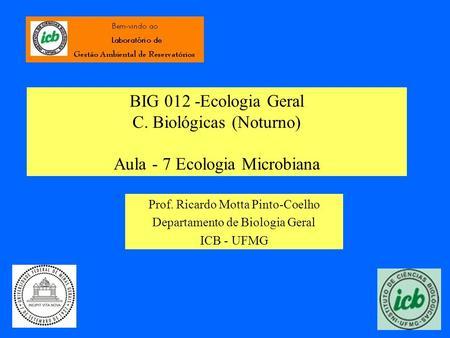 BIG 012 -Ecologia Geral C. Biológicas (Noturno) Aula - 7 Ecologia Microbiana Prof. Ricardo Motta Pinto-Coelho Departamento de Biologia Geral ICB - UFMG.