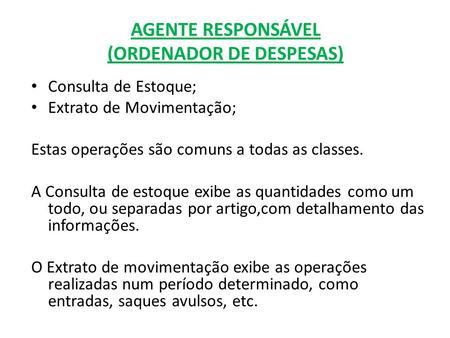 AGENTE RESPONSÁVEL (ORDENADOR DE DESPESAS) Consulta de Estoque; Extrato de Movimentação; Estas operações são comuns a todas as classes. A Consulta de estoque.