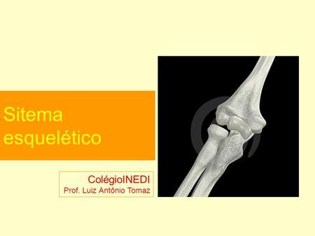 Sitema esquelético ColégioINEDI Prof. Luiz Antônio Tomaz.