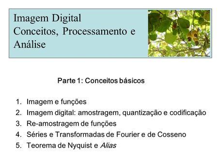 Imagem Digital Conceitos, Processamento e Análise 1.Imagem e funções 2.Imagem digital: amostragem, quantização e codificação 3.Re-amostragem de funções.