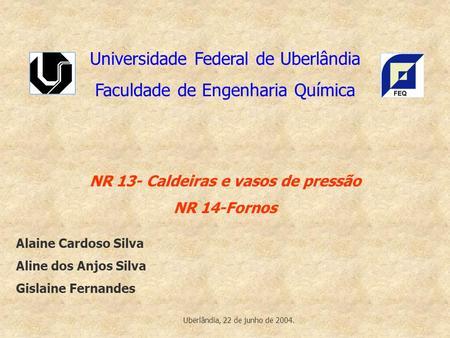 Universidade Federal de Uberlândia Faculdade de Engenharia Química NR 13- Caldeiras e vasos de pressão NR 14-Fornos Alaine Cardoso Silva Aline dos Anjos.