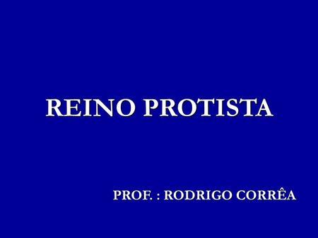 REINO PROTISTA PROF. : RODRIGO CORRÊA.