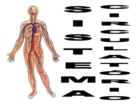 INTRODUÇÃO Atua no transporte de substâncias (nutrientes, gases, hormônios e excretas) e na defesa do organismo. Presente em anelídeos, moluscos, artrópodas,