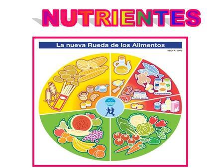 NUTRIENTES.