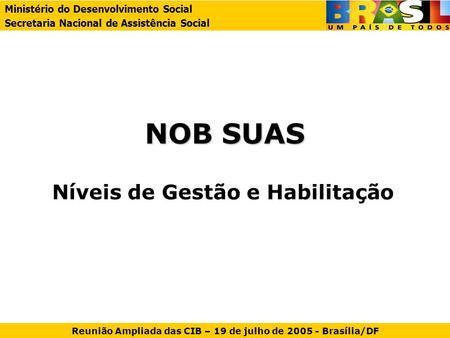 NOB SUAS Níveis de Gestão e Habilitação Ministério do Desenvolvimento Social Secretaria Nacional de Assistência Social Reunião Ampliada das CIB – 19 de.
